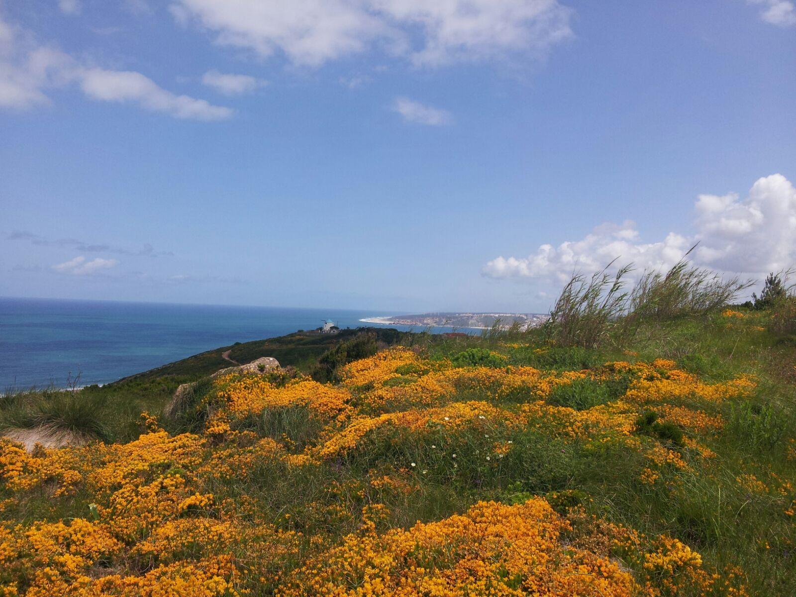silver coast in Portugal